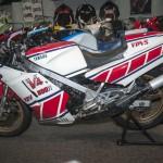 Yamaha RZV-500R 1984 (2)